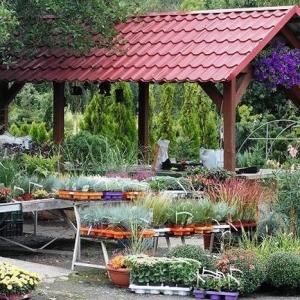 Vorgarten gestalten: 63 moderne Ideen für Vorgartengestaltung