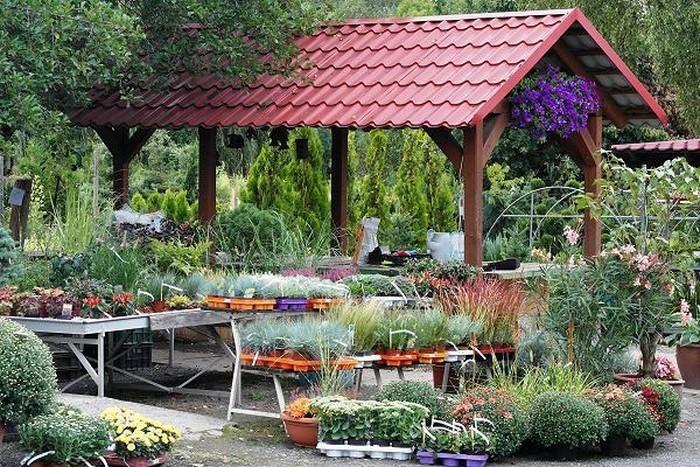Vorgarten-gestalten-Eine-außergewöhnliche-Gestaltung