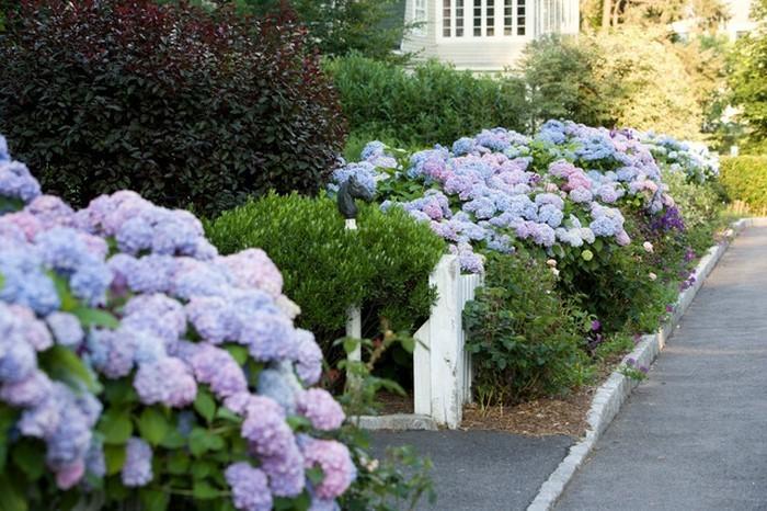 Vorgarten-gestalten-Eine-wunderschöne-Deko