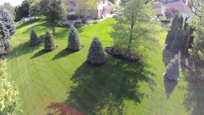 Vorgarten-gestalten-Eine-wunderschöne-Dekoration