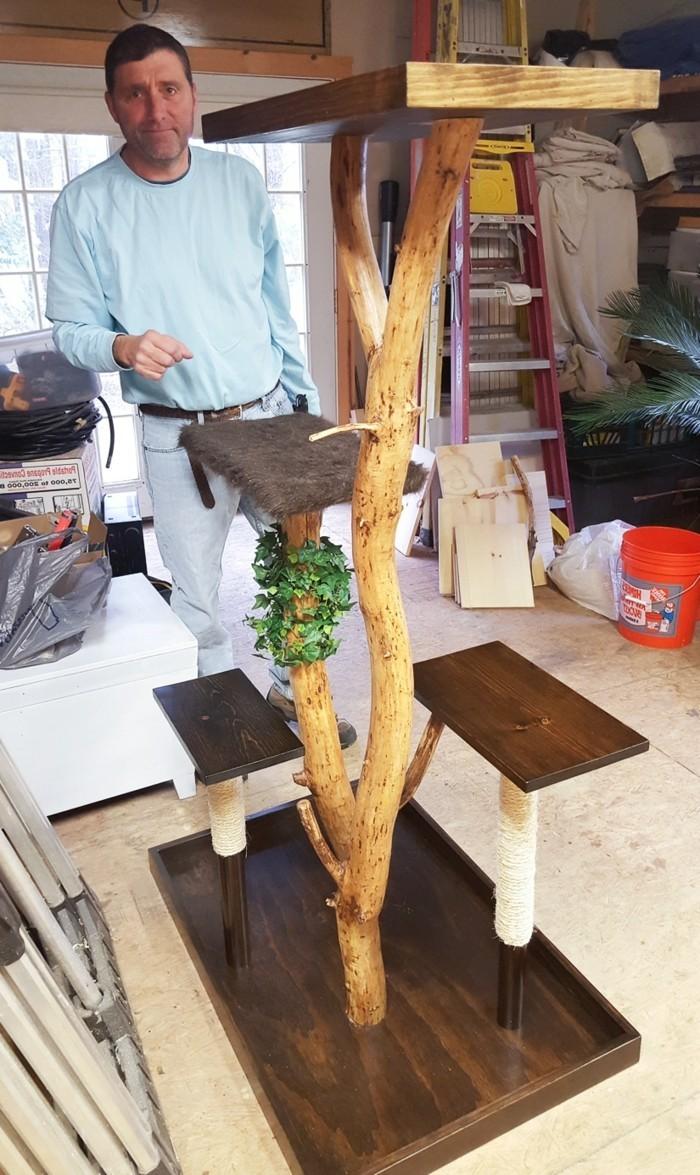kratzbaum-selber-bauen-aus-einem-gefällten-baum-einen-kratzbaum-selber-bauen