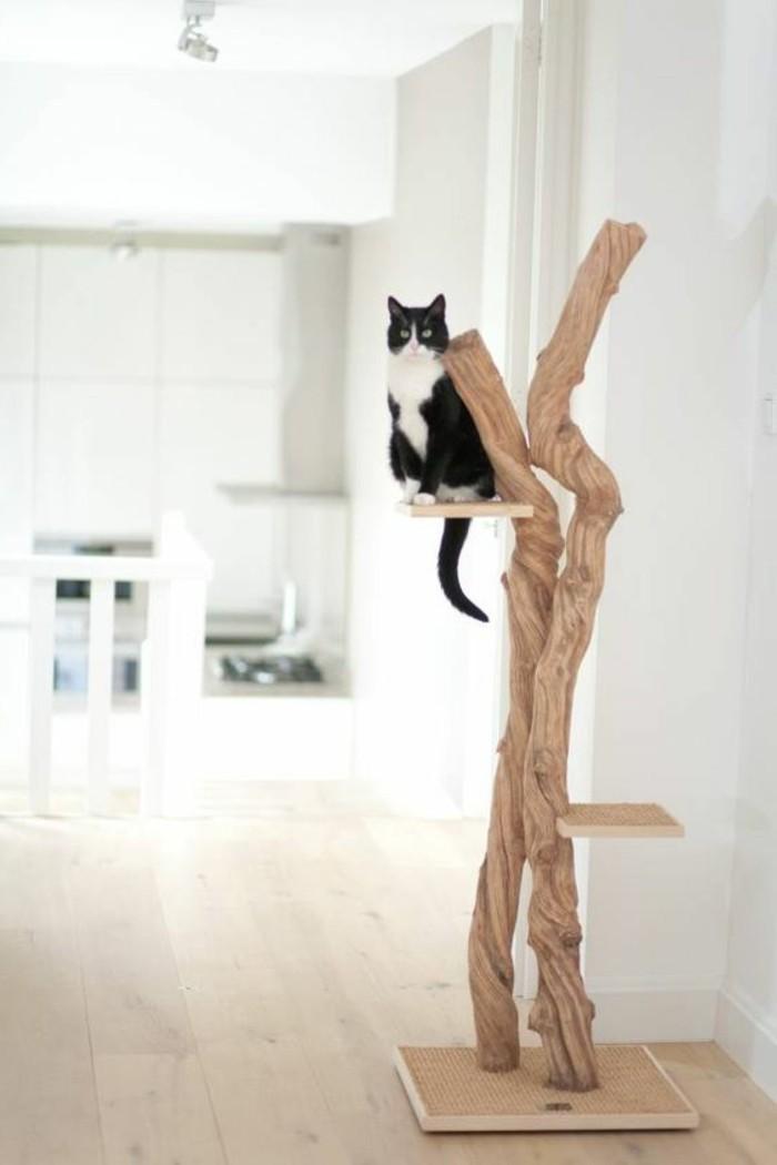 kratzbaum-selber-bauen-aus-naturmaterialien-einen-ausgefallenen-kratzbaum-selber-bauen