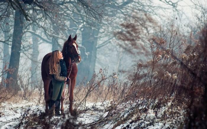 schöne-pferde-bilder-die-beziehung-zwischen-mensch-und-pferd-ist-sehr-stark