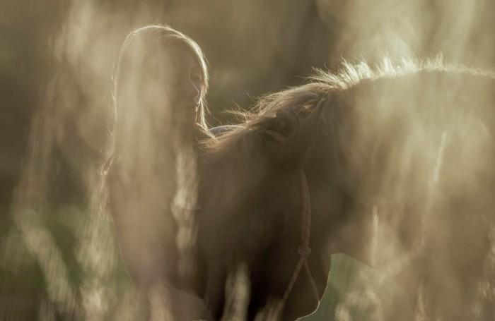 schöne-pferde-bilder-die-starke-beziehung-zwischen-pferd-und-mensch