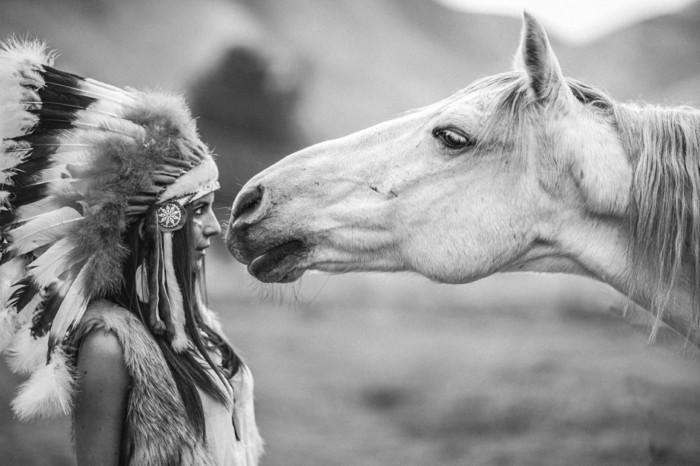 schöne-pferde-bilder-schöne-pferde-bilder-in-schwarz-weiß