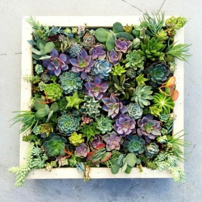 Bild Mit Echten Pflanzen Wohn Design
