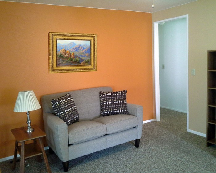 Farben-für-Wohnzimmer-in-Orange-Eine-wunderschöne-Gestaltung