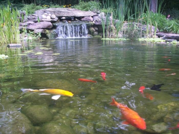 45 tolle ideen wie sie einen gartenteich anlegen k nnten for Teich mit fischen