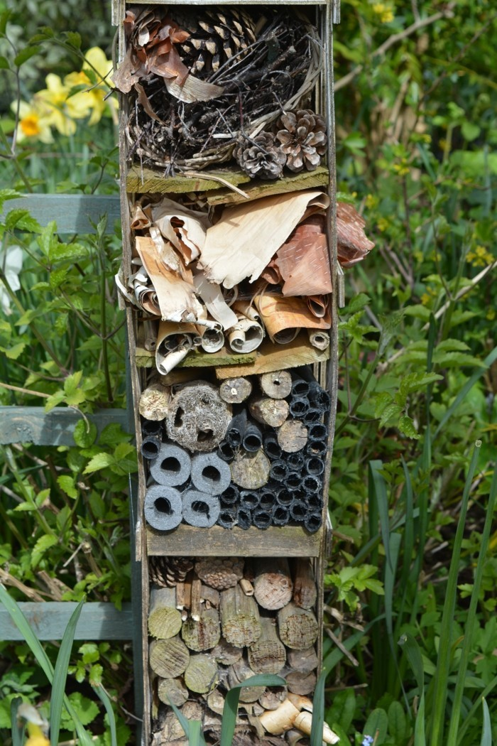 Insektenhotel Selber Bauen Ein Schönes Miit
