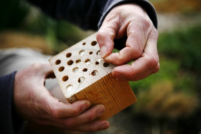 insektenhotel-selber-bauen-man-kann-sehr-leicht-ein-insektenhotel-selber-bauen