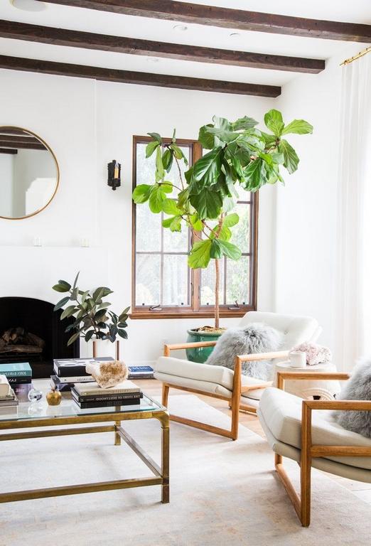 kleine räume geschickt einrichten weiße sessel große pflanzen hell naturlicht