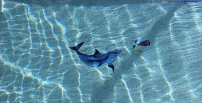 pool-fliesen-hier-sind-tolle-pool-fliesen