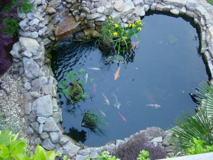 Teich bepflanzen mehr als 70 ideen for Fische teich winter