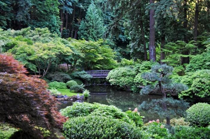 Garten moderner teich verschiedene ideen for Garten bepflanzen modern