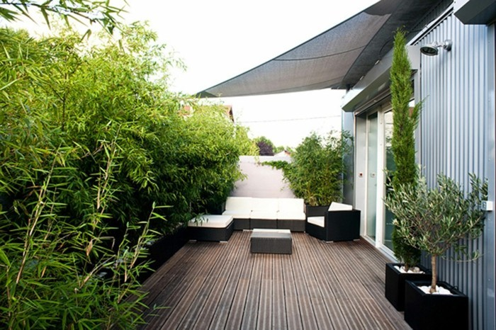 viele-grüne-pflanzen-als-beschattung-für-die-terrasse