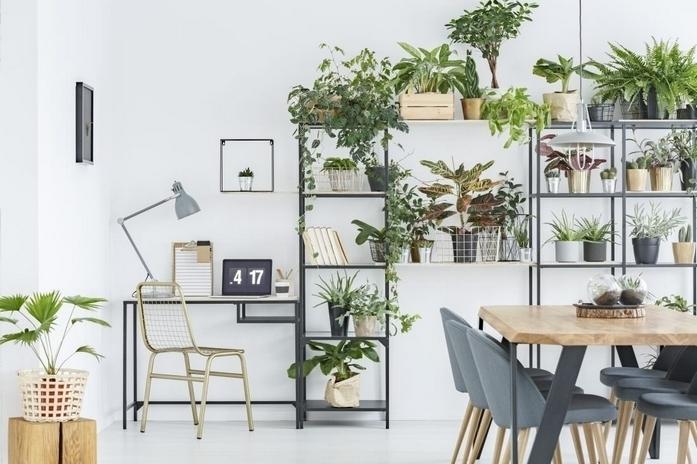 wohnungsideen kleines zimmer einrichten schlafzimmer einrichten ideen regale viele pflanzen esstisch