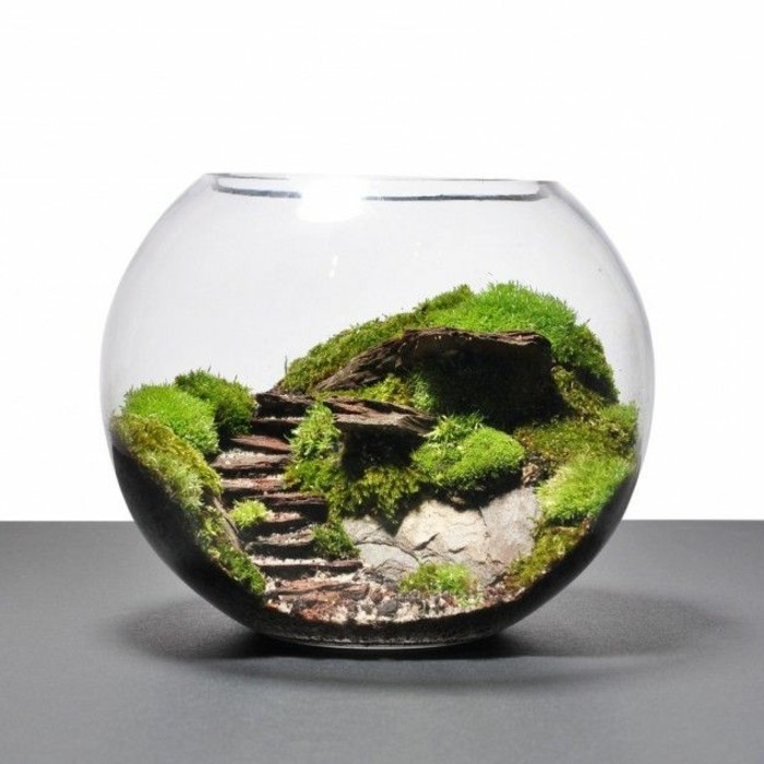 terrarium-selber-bauen-ausgefallenes-terrarium-selber-bauen