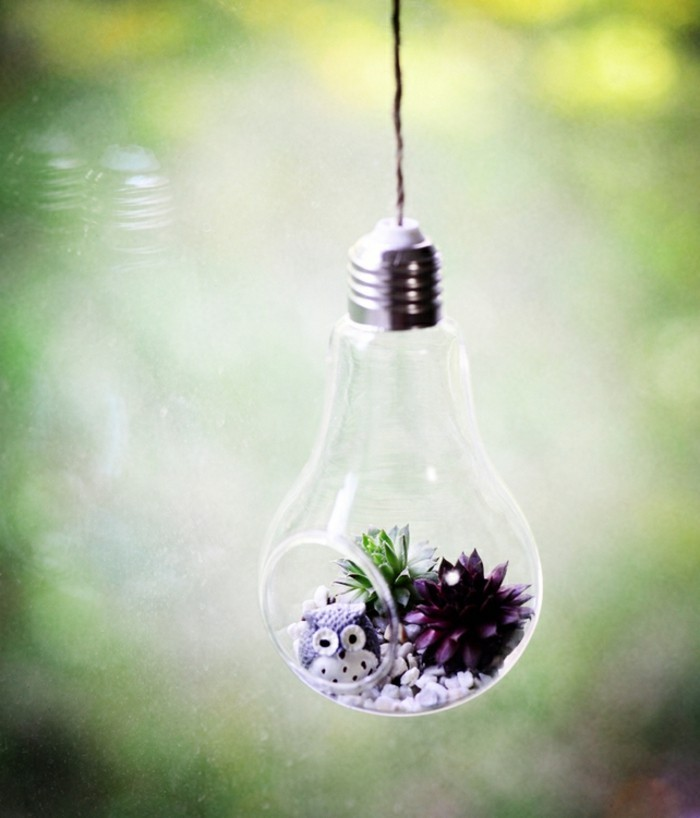 terrarium-selber-bauen-ein-kleines-terrarium-selber-bauen