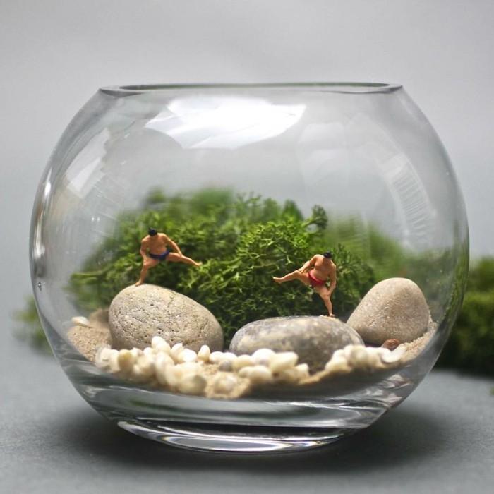 terrarium-selber-bauen-ein-schönes-terrarium-selber-bauen