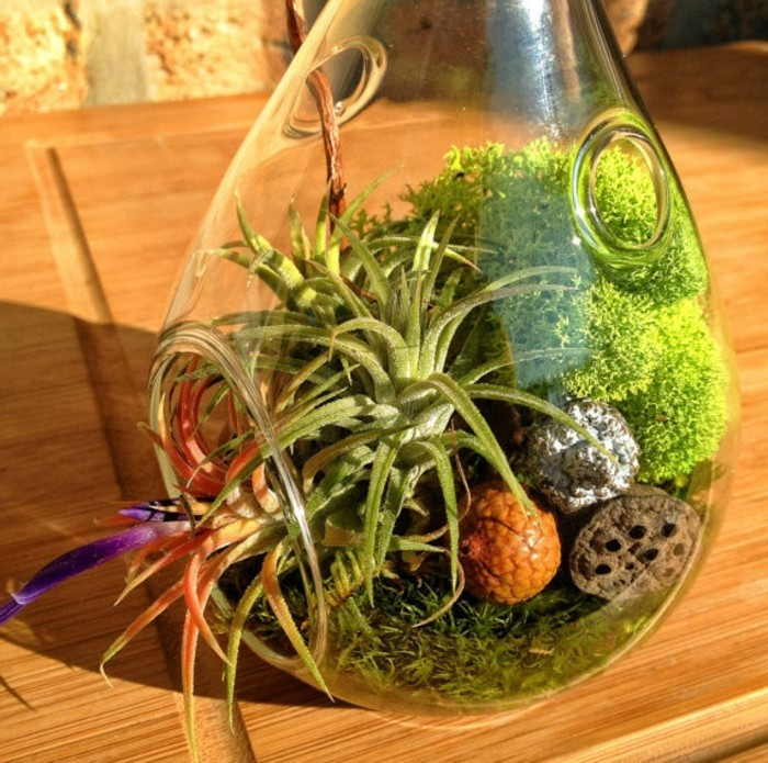terrarium-selber-bauen-eine-terrarium-deko