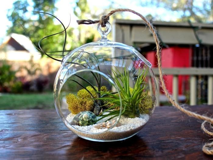 terrarium-selber-bauen-idee-zum-thema-mini-terrarium-selber-bauen