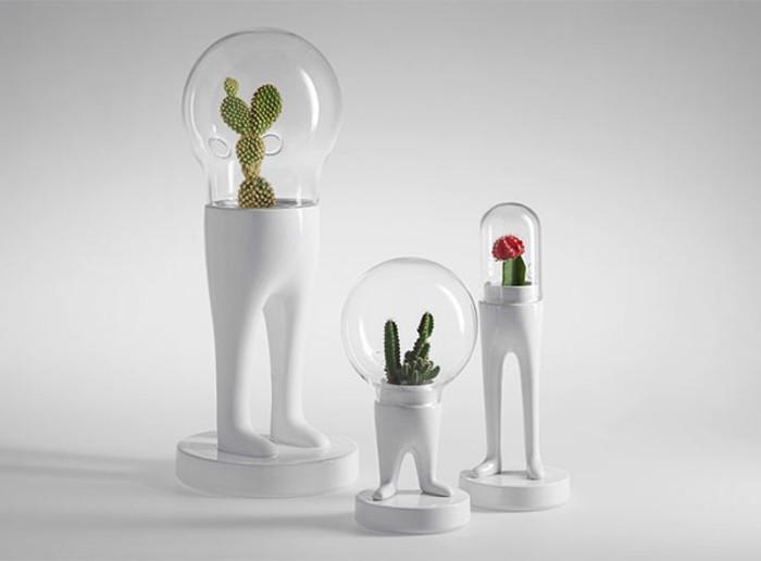 terrarium-selber-bauen-idee-zum-thema-terrarium-selber-bauen