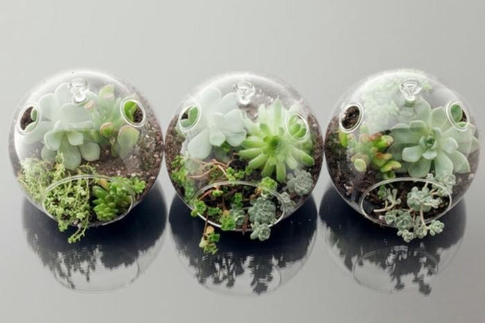 terrarium-selber-bauen-man-könnte-auch-ein-mini-terrarium-selber-bauen
