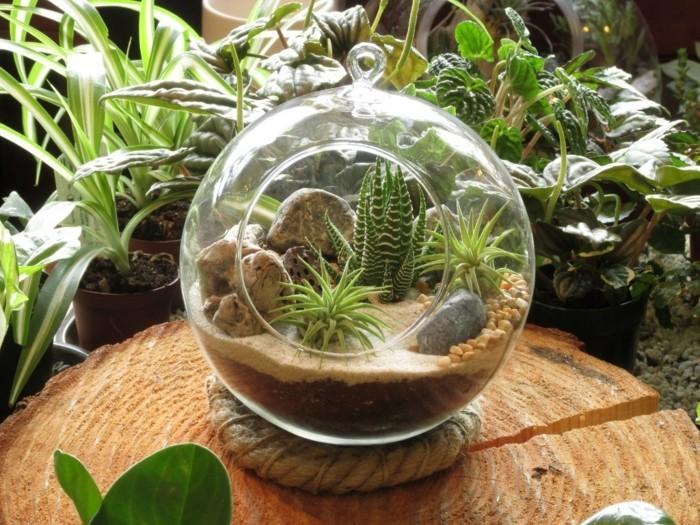 terrarium-selber-bauen-noch-ein-terrarium-für-pflanzen