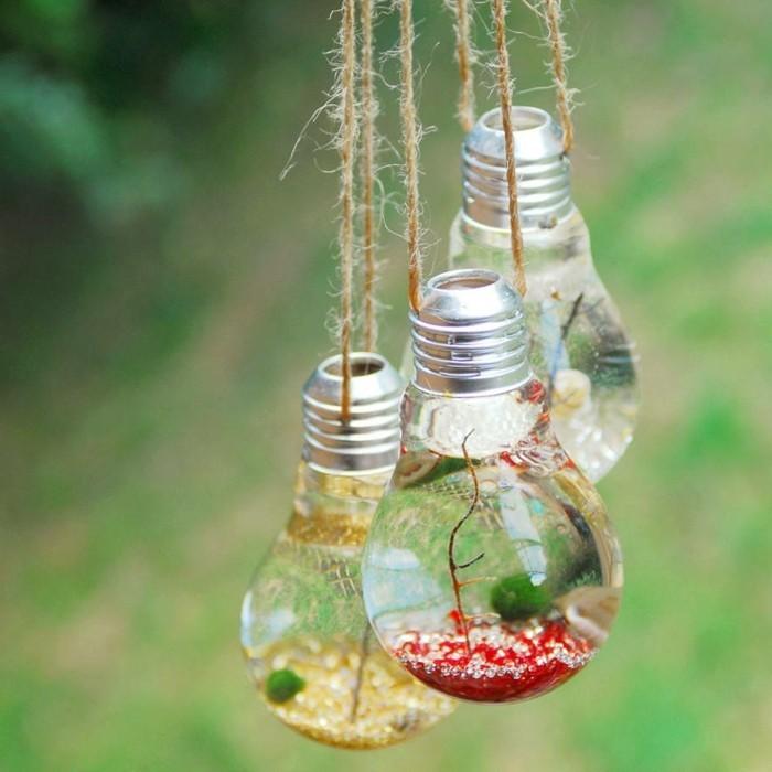 terrarium-selber-bauen-noch-etwas-zun-thema-pflanzen-im-terrarium