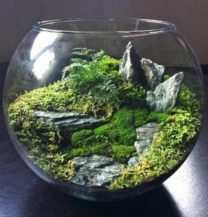 terrarium-selber-bauen-schönes-terrarium-für-pflanzen