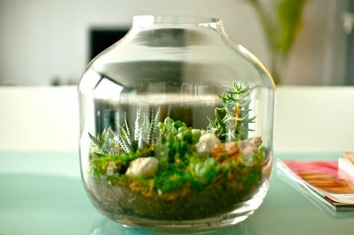terrarium-selber-bauen-schönes-terrarium-selber-bauen