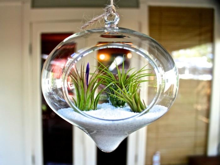 terrarium-selber-bauen-toll-aussehendes-terrarium-selber-bauen