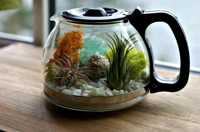 ber 40 vorschl ge wie sie ein terrarium selber bauen. Black Bedroom Furniture Sets. Home Design Ideas