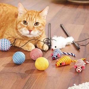 Katzenspielzeug - die Träume der Katzen gehen in Erfüllung