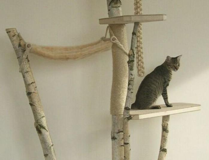 bei der wahl des passenden katzenspielzeug ist besonders wichtig. Black Bedroom Furniture Sets. Home Design Ideas