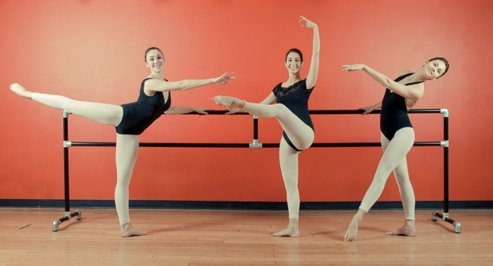 ballettstangen-beharrlichkeit-liebe-balletttanzen-ballettstange-zuhause-oder-im-studio