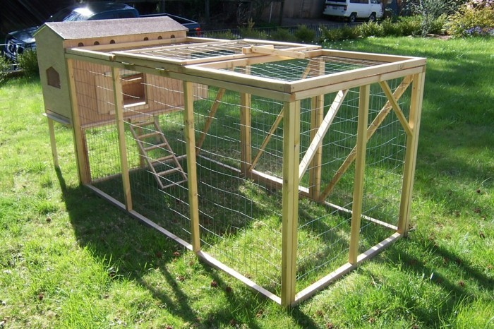 huhnerstall-selber-bauen-einen-ausgefallenen-huhnerstall-selber-bauen