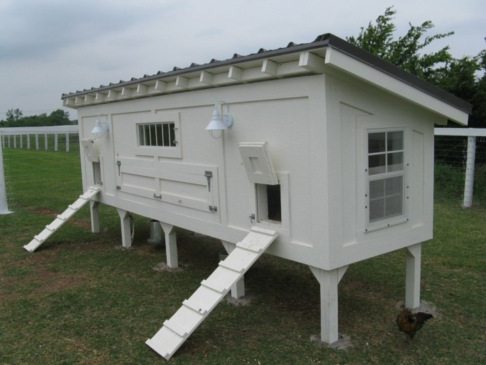 huhnerstall-selber-bauen-hier-ist-idee-zum-thema-huhnerstall-bauen