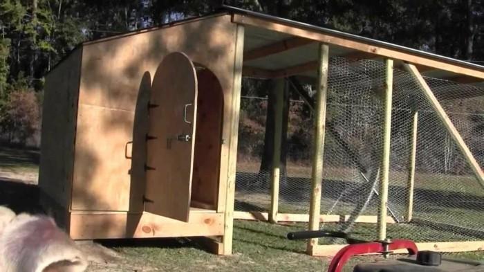 huhnerstall-selber-bauen-jeder-kann-einen-huhnerstall-bauen