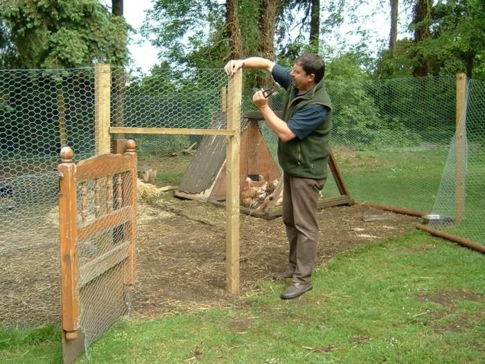 huhnerstall-selber-bauen-jeder-kann-einen-schon-aussehenden-huhnerstall-selber-bauen