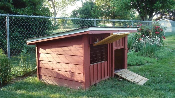 huhnerstall-selber-bauen-man-konnte-einen-kleinen-huhnerstall-selber-bauen