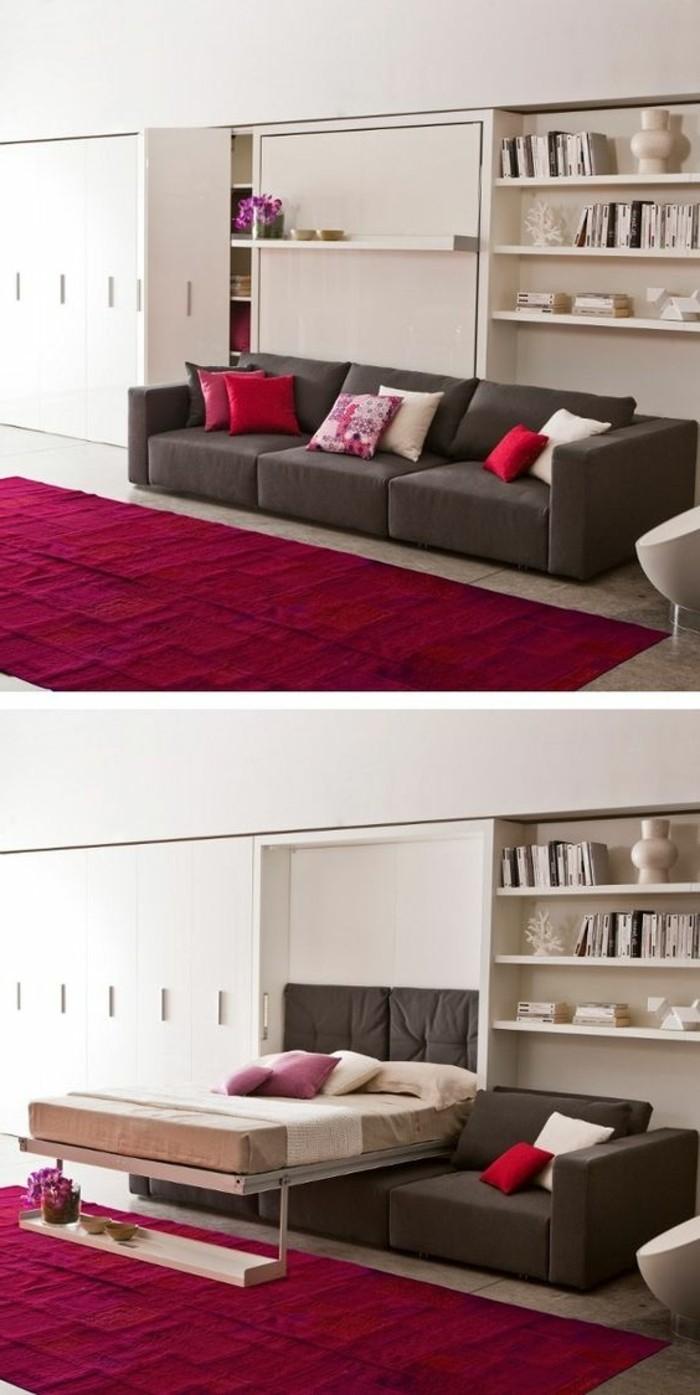 5-einzimmerwohnung-grauer-sofa-bett-weisser-schrank-roter-teppich