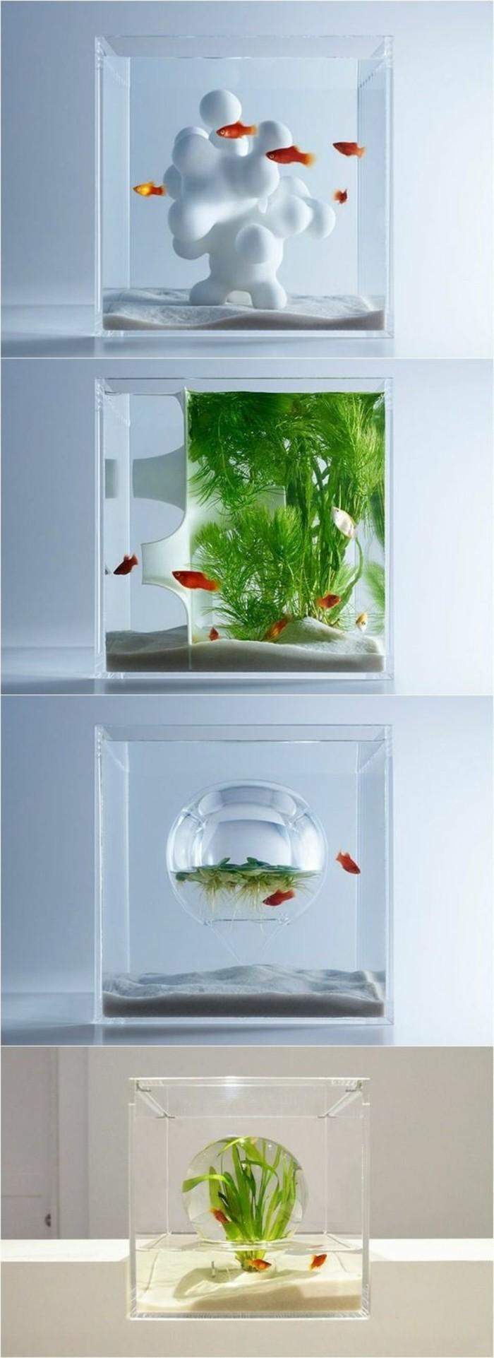 Aquarium Einrichtung sorgt f u00fcr das Wohlf u00fchlen der Wassertiere   Archzine net