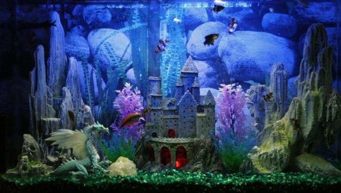 aquarium-schloss-aquarium-deko-drache-steine-kleine-exotische-fische-aquarium-einrichten