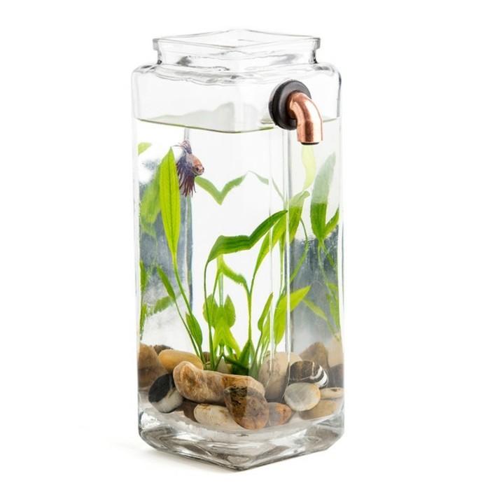 gestaltungsideen-fur-aquarium-aquarium-deko-mit-steinen-wasserpflanzen-kleines-aquarium