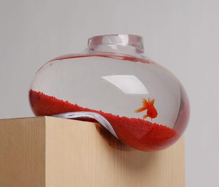 hangendes-aquarium-fur-goldfische-mit-orangem-sand-glas-aqarium-einrichten-kleines-aquarium