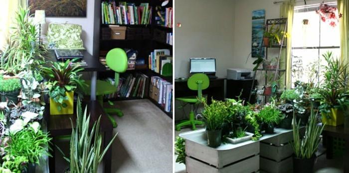 kakteeninderarbeitsecke-zuhausepflanzen-wohnungsdeko-dekotippsmitpflanzen