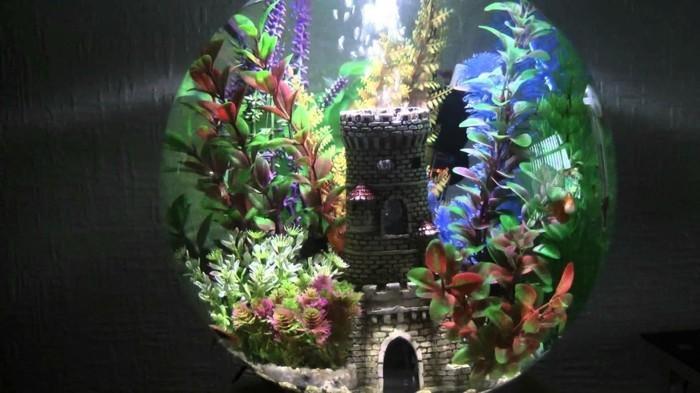 kleines-aquarium-mit-einem-schloss-wasserpflanzen-kleine-fische-aquarium-einrichten