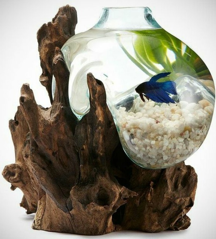 kleines-blasenaquarium-weise-steine-blauer-fisch-pflanzen-trockene-aste-aquarium-deko