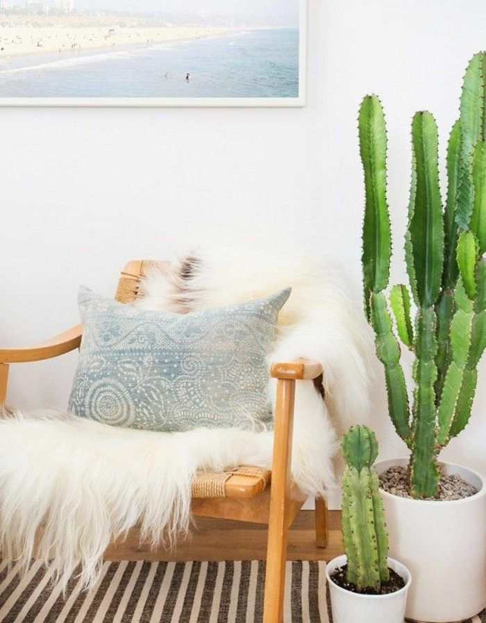 pflanzenecke-kakteenecke-wohndeko-ideen-wohnungsdeko-dekotipps-wohnzimmer